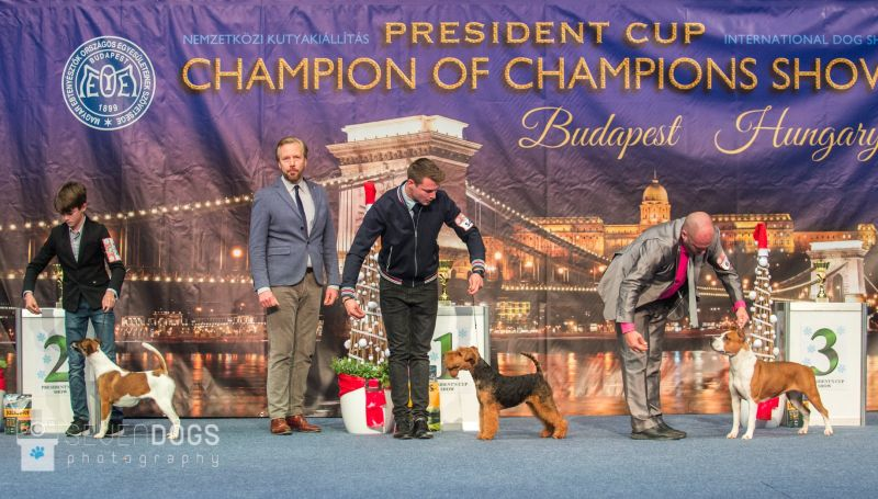 President's Cup 2018
