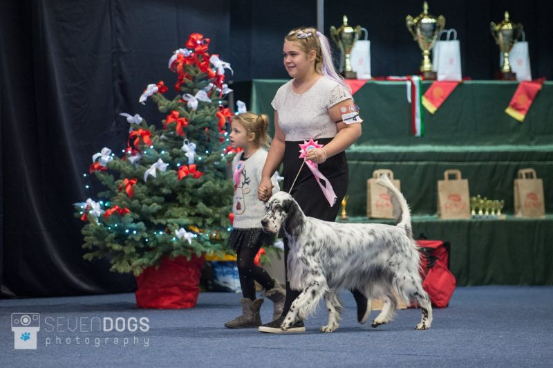 Junior Handler Gála 2018
