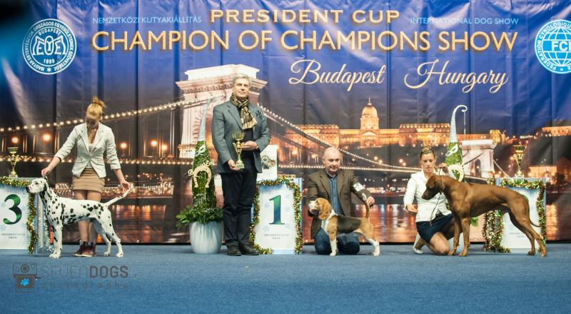 President's Cup 2017