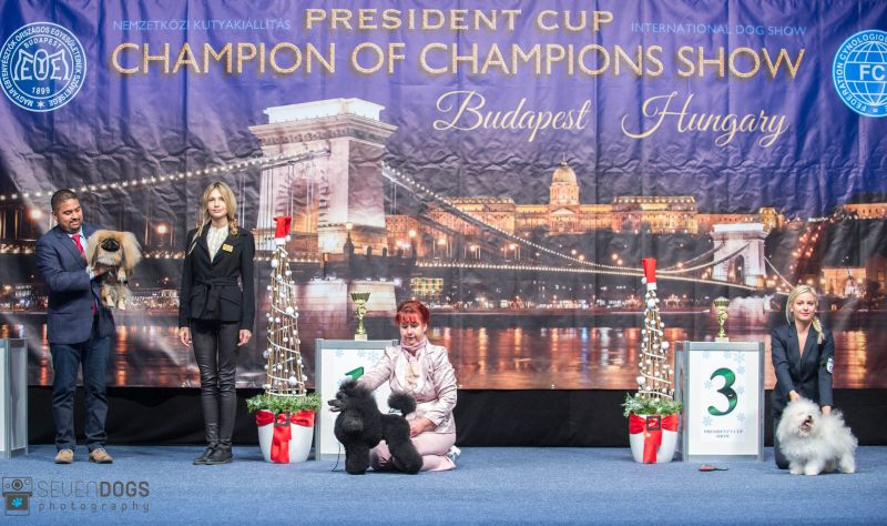 President's Cup 2017 december